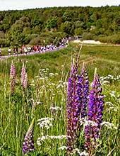 illu-naturpark2