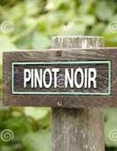 illu-pinot