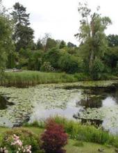 søerne